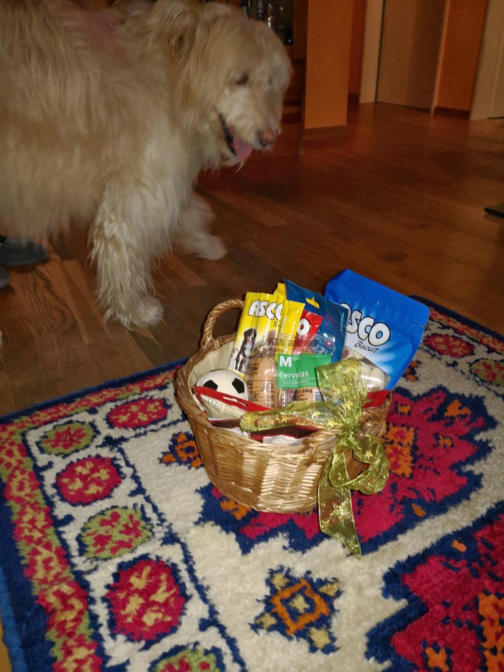 Viktor begutachtet seinen Geschenkkorb
