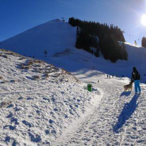 Viktor und Alexandra im Schnee