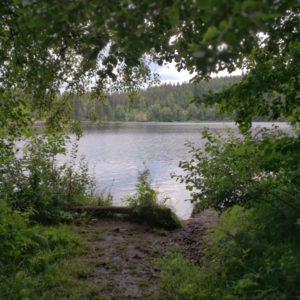 Blick auf Windgfaellweiher mit Baeumen im Vordergrund