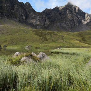 Blick auf Blausee, im Vordergrund Schilf und Steinformation