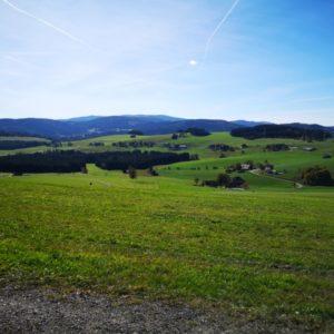Blick auf grüne Weiden und Bauernhöfe bei blauem Himmel
