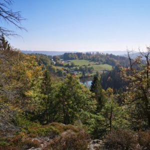 Aussicht von oben auf den Klosterweiher vom Wald