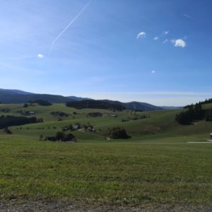 Ausblick auf Bauernhöfe