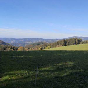 Ausblick vom Rossberg auf bewaldete Hügel