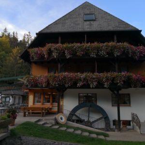 Tannenmühle von der Seite mit Wasserrad